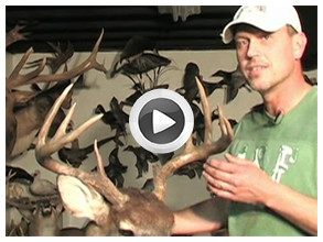 Advanced Antler Repair Video Preview- Taxidermist Don Rich