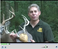 Deer Antler Mount Video